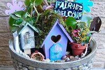 fairy / troll garden. / by Amanda Bain