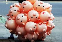 pig obsession. / by Amanda Bain