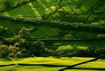 English Countryside / Beautiful imagery of this green and pleasant land