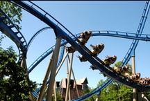 Coasters & Thrills! / by Dollywood