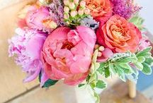 Wedding Ideas / wedding, bride, bridesmaids, guests, invitations, wedding dresses, flowers, bouquets, floral, bridal, gowns, inspiration, ideas, designs, locations, party