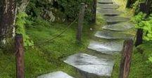 Polut ja portaat / Kuvia erilaisista poluista