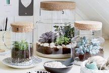 UN COIN DE VERDURE DIY / Comment organiser un petit jardin d'intérieur avec des DIY simples