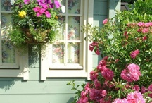 Beautiful Home Exteriors / by Sue Carrero