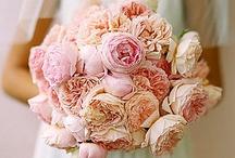 { of vintage pink weddings }