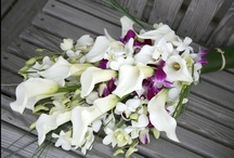 Wedding - Bouquets & Boutonnieres / Enjoy our selection  / by Mandilyn & Company