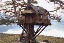 """"""" Cabane """" dans les arbres / Tree house, Cabane dans les arbres   / by Fleurs d'avenir"""