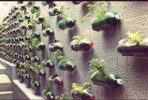 Ideas for my Herb Garden