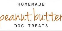 Cooking With Your Pup! / Check out these amazing dog treats!