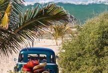 Querida Mexico