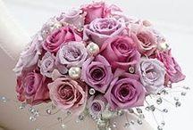 Dream Wedding / by Sheri Sisler-Moneymaker