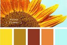 Design-Color Palettes & Patterns / by Allison Shoaff
