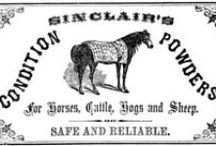 Equestrian Graphic Design / Posters, advertisements, postcards, product labels etc - modern and vintage