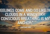 Satorio Meditation Quotes