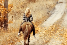 Country Roads Take Me Home / by Pam Curzon