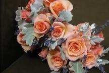 Peach & Gray Wedding / Peach, Coral, and Gray Wedding ideas.  / by Shawn Hobbs