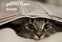 petMD News / We know that you want to know what is going on in the animal world; we bring you the most interesting animal news stories we can find. / by petMD.com