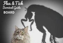 Fight The Fleas / All you need to know about how to handle fleas & ticks and keep them from crawling to your pets!