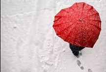 Winter Wedding Inspiration / Winter Wedding Inspiration / by Crossfire Photography
