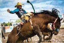 Wild West / Give me a home where the buffalo roam...