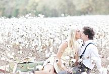 Photography: Engagements / by Celebrate Events