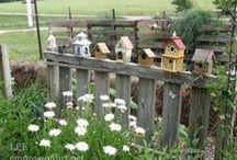 Cute Yard Ideas / by Shelley Goulart