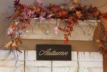 Autumn & Fall ᗪecor / by Jen