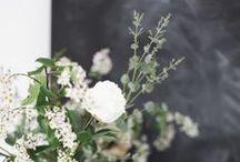 FLOWERS & PLANTS / by Johanna