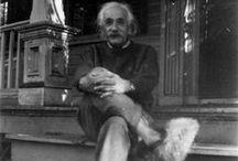 Einstein and the 1950s  / Albert Einstein and the 1950s