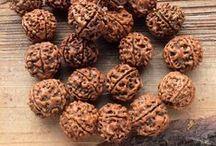 РУДРАКША орехи бусины