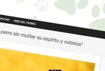 Diseño de páginas web / Creación desarrollo y diseño de páginas web Madrid www.ideaweb.es