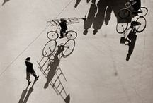 bicycle / by Hannah Ferrara | Another Feather