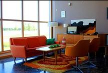 Orange You Glad / Orange is the color of creativity and just the hue to add that POP to any space!