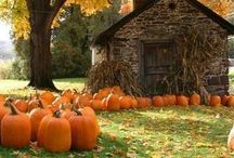 Falloween & Thanksgiving