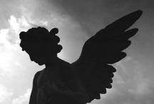 Angels & Fairies / by Vicki Li