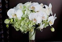 Wedding Florals / by Neah Alexandra