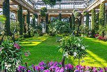 Botanical Garden Group / Group board about Botanical Gardens around the world, Herb Gardening, Botanical Photography.