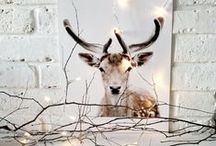 ➕♥️3 Christmas