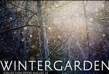 Winter Garden / by Dan and Emma Eagle - Mr Bigglesworthy