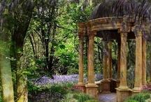 Gorgeous Garden / by Judie Duncan