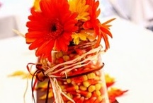 Fall Weddings / by Beautiful Memories Cinematography
