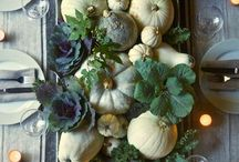 autumn . / by Molly Kidd