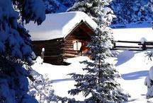 Winter can be pretty... / by Angela Wonnacott