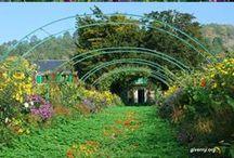 Garden, Porches & outdoor space