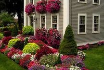 Outside of your Home / Gardening and landscaping tips and designs!