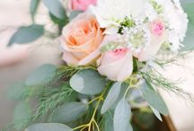 my flowers . / by Molly Kidd