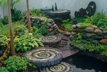 Gardening/ Backyard / by Emily Wilbanks