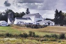 The White Barn @ South Farms