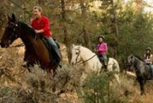 Outdoor Recreation / Big Bear Lake offers many different season and year-round activities for beginners to advance. Visit our four-season mountain resort to enjoy hiking, biking, fishing, snowboarding, skiing, lake activities and more!