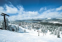 Winter Activities / Big Bear Lake offers many outdoor winter activities such as skiing, snowboarding, tubing, sledding, snowshoeing, off-road tours, ziplining, tours of Big Bear, hiking and more!